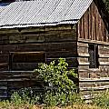 Cabin In The Wilderness by Image Takers Photography LLC - Laura Morgan and Carol Haddon