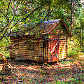 Cabin In The Woods by Heidi Smith