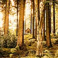Cabin In The Woods by Innershadows Photography