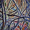 Cable Jungle by Gwyn Newcombe