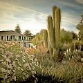 Monterey California Cactus Garden by Barbara Snyder