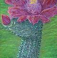Cactus Bloom by Dawn Marie Black