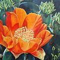 Cactus Bloom by Terrie Leyton