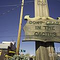 Cactus Crap  by Rob Hawkins
