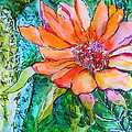 Cactus Flower by Mindy Newman
