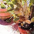 Cactus Garden by Shannon Grissom