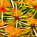 Cactus Pattern 3 Yellow by Amy Vangsgard