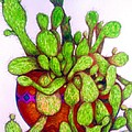 Cactus by Rae Chichilnitsky