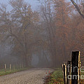 Cades Cove Color II by Douglas Stucky