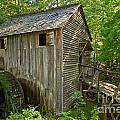 Cades Cove Grist Mill Closeup by Adam Jewell