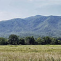 Cades Cove In The Great Smoky Mountains by Cricket Hackmann