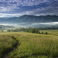 Cades Cove Meadow by Andrew Soundarajan