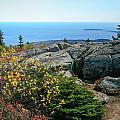 Cadillac Autumn - Acadia National Park by Doug McPherson