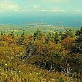 Cadillac Mountain  by Robert McCulloch
