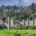 Caerhays Castle by Chris Thaxter
