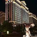 Caesar's Palace by Eddie Yerkish