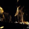 Caged Fire by Jannice Walker