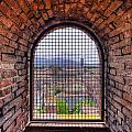 Caged View by Matt Swinden