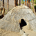 Cahuilla Indian Dwelling In Andreas Canyon In Indian Canyons-ca by Ruth Hager