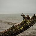 Cairn On Superior by Paul Freidlund