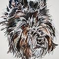 Cairn Terrier Martha by Susan Herber