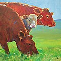 Calf And Cows Painting by Mike Jory