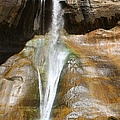 Calf Creek Falls 3 by Tonya Hance