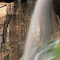 Calf Creek Falls Ut Usa by Panoramic Images