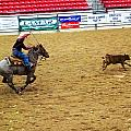 Calf Roping by C H Apperson