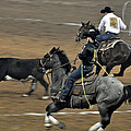 Calf Roping Scramble by Teresa Blanton
