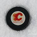 Calgary Flames by Michael Krek