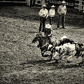 Calgary Stampede Black And White by Diane Dugas