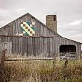 Calico Barn by Deb Buchanan