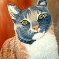 Calico Cat by Karen Zuk Rosenblatt