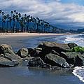 California Dreamin by Kathy Yates