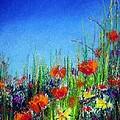 California Dreaming by Jodie Marie Anne Richardson Traugott          aka jm-ART