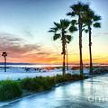 California Dreaming by Mel Steinhauer
