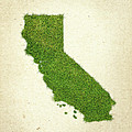 California Grass Map by Aged Pixel