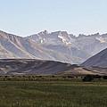 Bridgeport Cattle Ranch  by Krista Davis