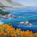 California Poppies Big Sur by Karin  Leonard