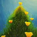 California Poppies by Veikko Suikkanen