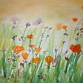 California Poppies by Vicky Kasparian