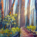 California Redwoods by Carolyn Jarvis