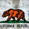 California State Flag Weathered And Worn by Dan Sproul