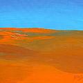 California Summer by Donna Blackhall
