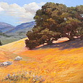California Summer by Maralyn Miller