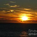 California Winter Sunset by Mini Arora