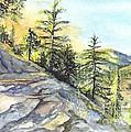 Californias Sierras by Carol Wisniewski