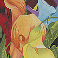 Calla Lily by John Edebohls