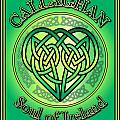 Callaghan Soul Of Ireland by Ireland Calling
